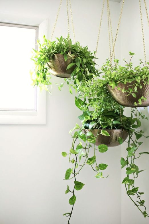 Green Home Decoration Ideas 2